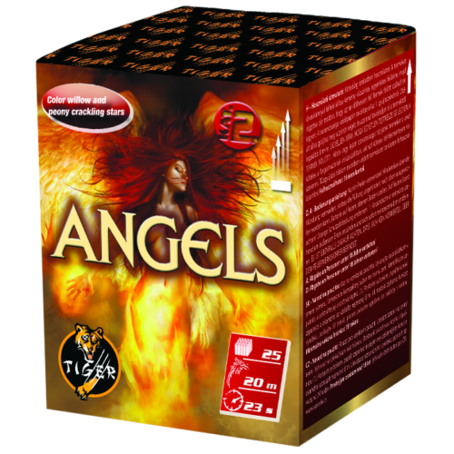ANGELS FROM HELL  25 shots