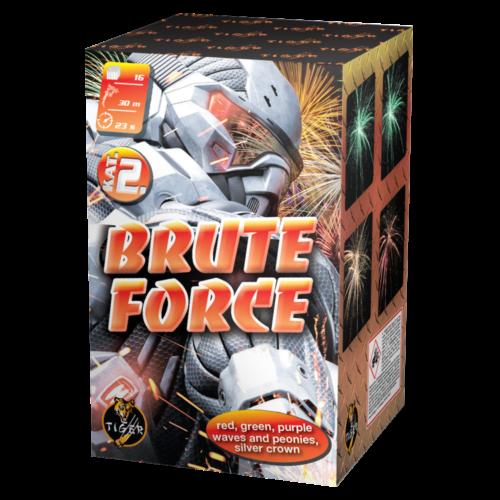 BRUTE FORCE 16 shots